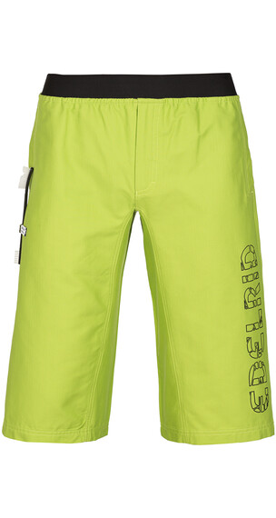 Edelrid Fry korte broek Heren groen